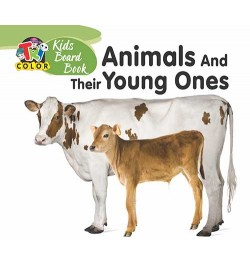 Buy Tricolor Kids Board Books-Animals and Their Young Ones Online in India
