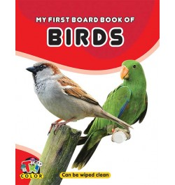 Tricolor My First Board Book of Birds