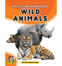 Tricolor My First Board Book of Wild Animals