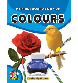 Buy Tricolor My First Board Book of Colours Online in India