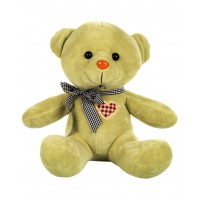 Dhoom Soft Toys Teddy Bear Multicolor 24 CM-Green