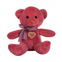 Dhoom Soft Toys Teddy Bear Multicolor 24 CM-Pink