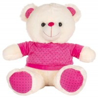 Dhoom Soft Toys Teddy Bear with TShirt 35 CM