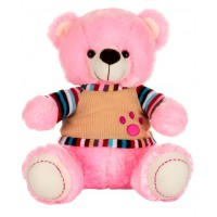 Dhoom Soft Toys Teddy Bear with TShirt 40 CM-Dress Pink