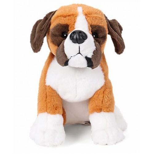 Sitting Dog Boxer
