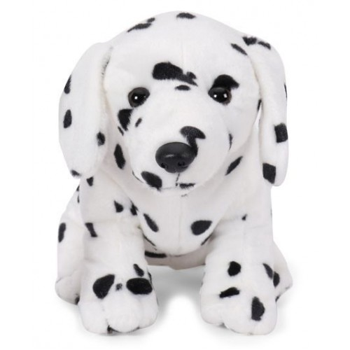 Sitting Dog Dalmatian - White Color